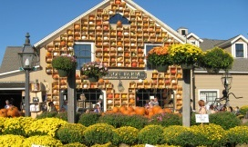 pumpkin-shopping